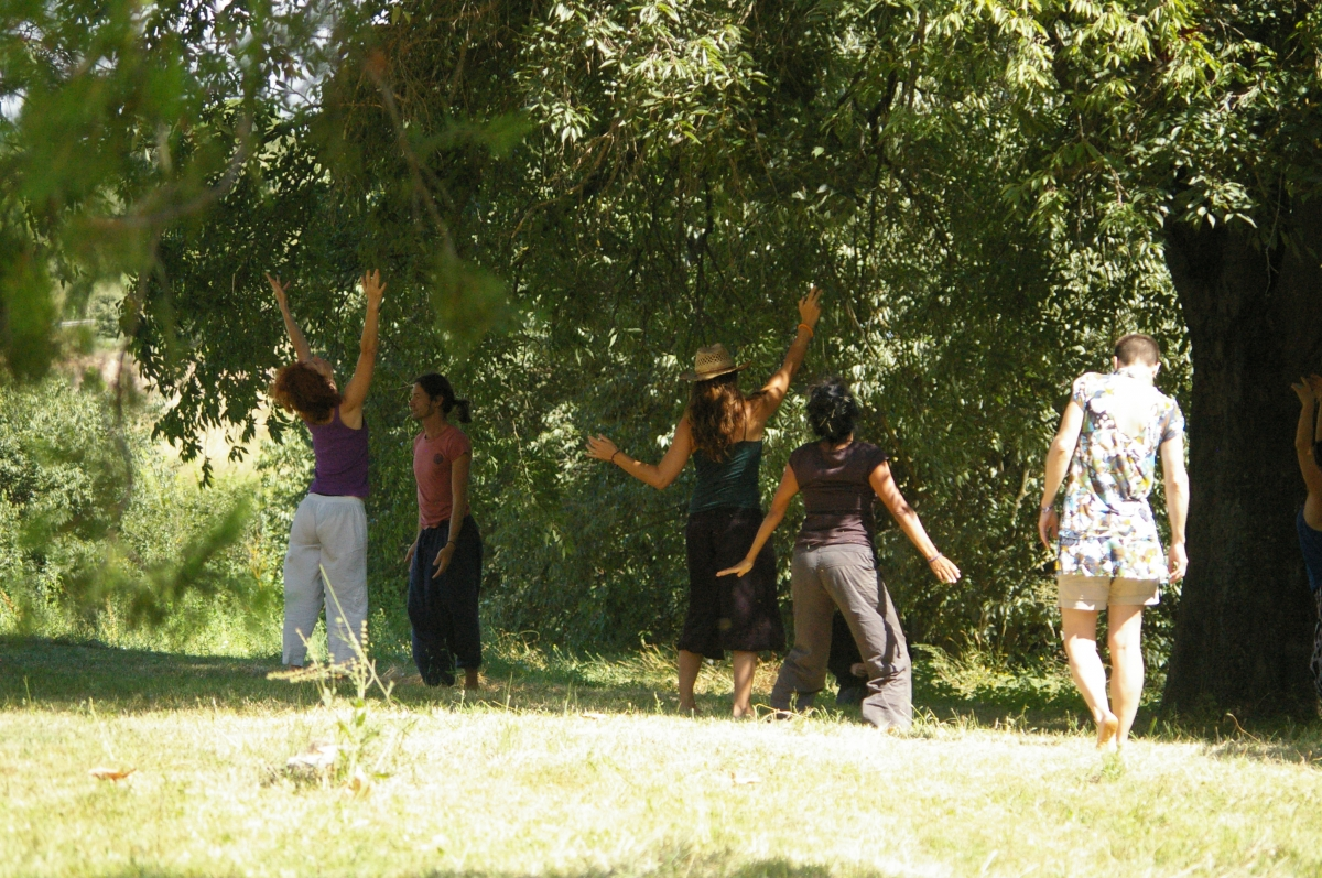 Workshop by Aude FondardHug A Tree Today