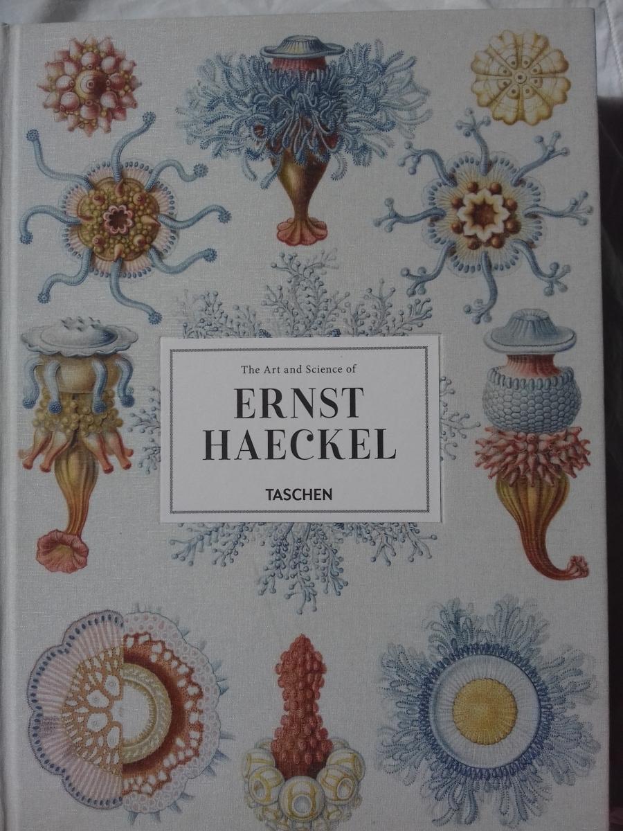 Ernst Haeckel Taschen