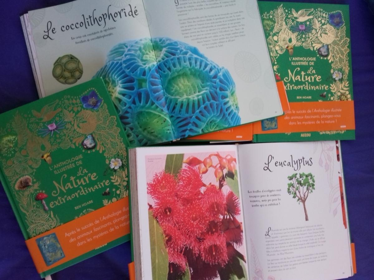 L'Anthologie de la nature, Ben Hoare, éditions Auzou